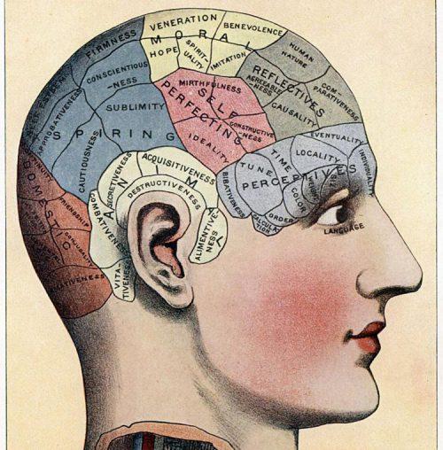 phrenological chart2