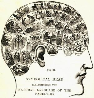 phrenologicalchart